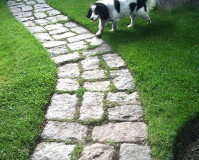 Used granite cobbles laid on their side make a classic garden path